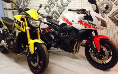 Yamaha FZ1 Red Speed Bloc